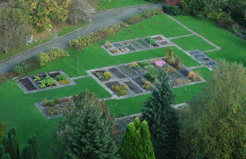 Informationen zum Gartenbereich System der Pflanzen