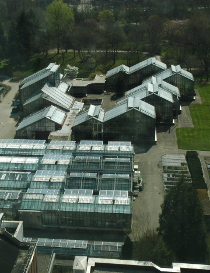 greenhouses_airview.jpg