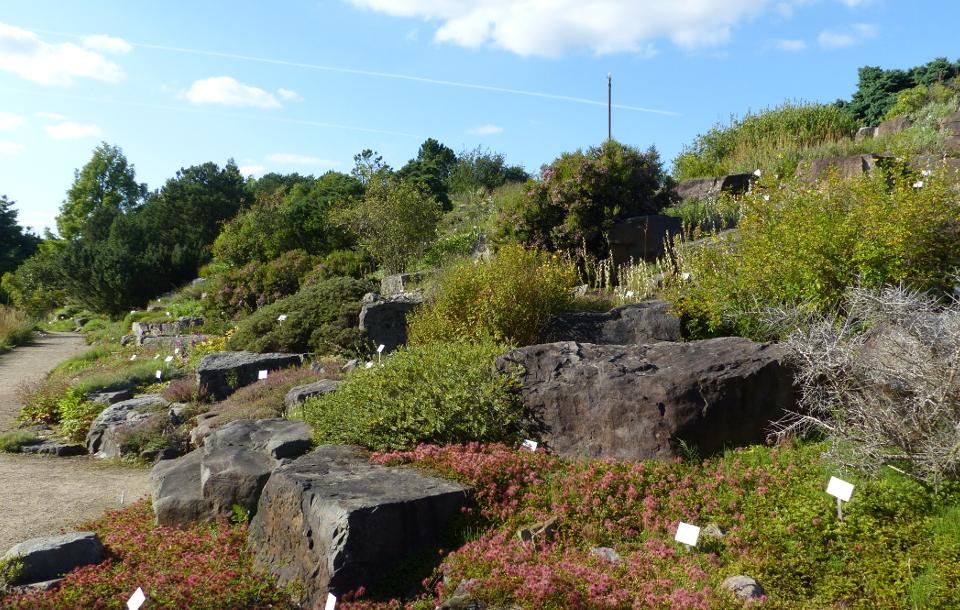 Informationen zum Gartenbereich Alpinum