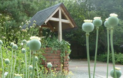 Informationen zum Gartenbereich Arzneipflanzengarten