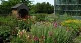 major_garden.jpg