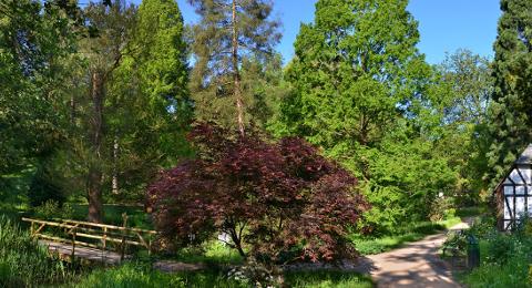 Old Botanic Gardens